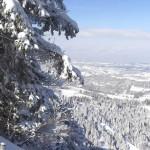 Blick ins Tal, Oberstaufen, Steibis