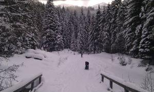 leichte Skitour in der Kelchsau – Neue Bamberger Hütte