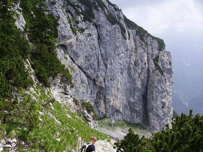 Abstieg Richtung Kufstein (zur Ritzau Alm)