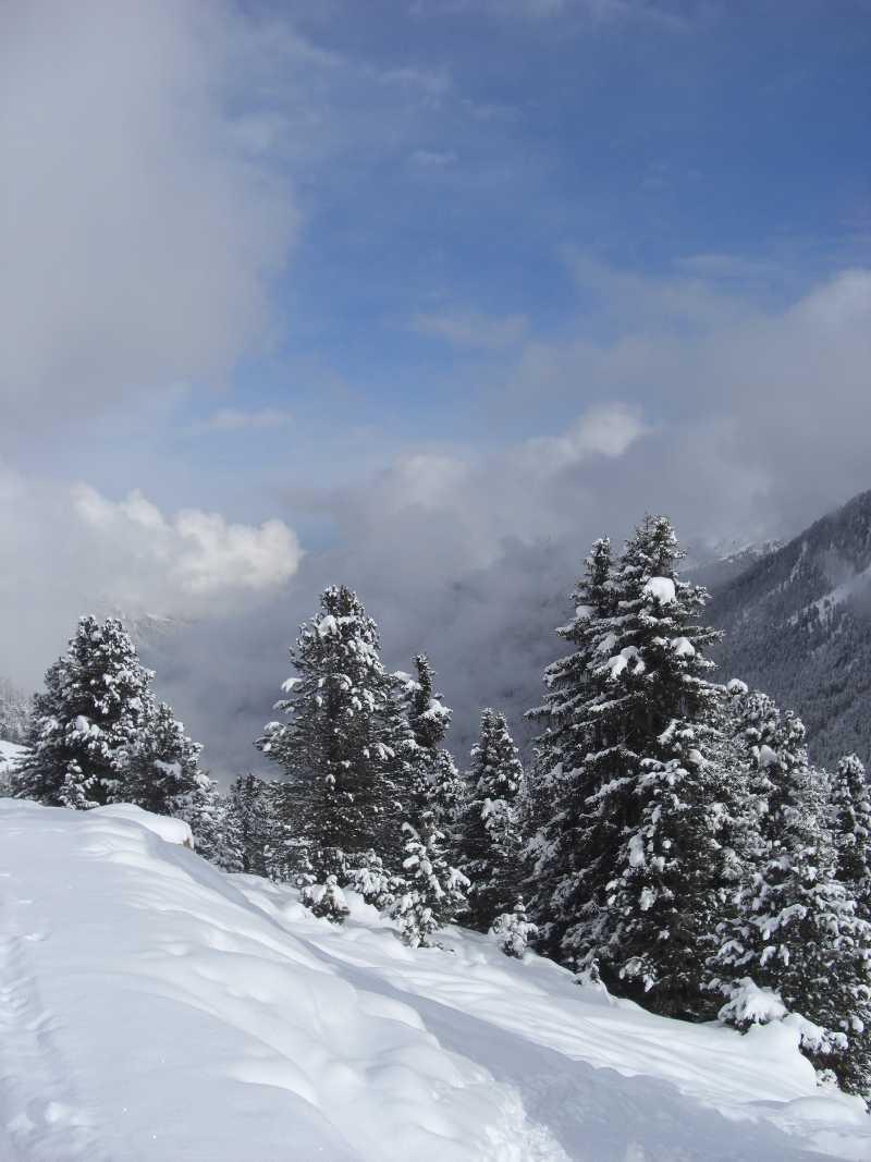 Skitour zur Lampsenspitze von Praxmar- im November 2010