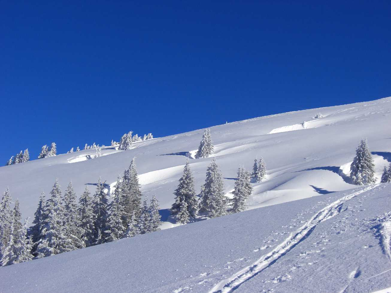 Anfänger-Skitour Stuckkogel – Kitzbühler Alpen, 1880 m