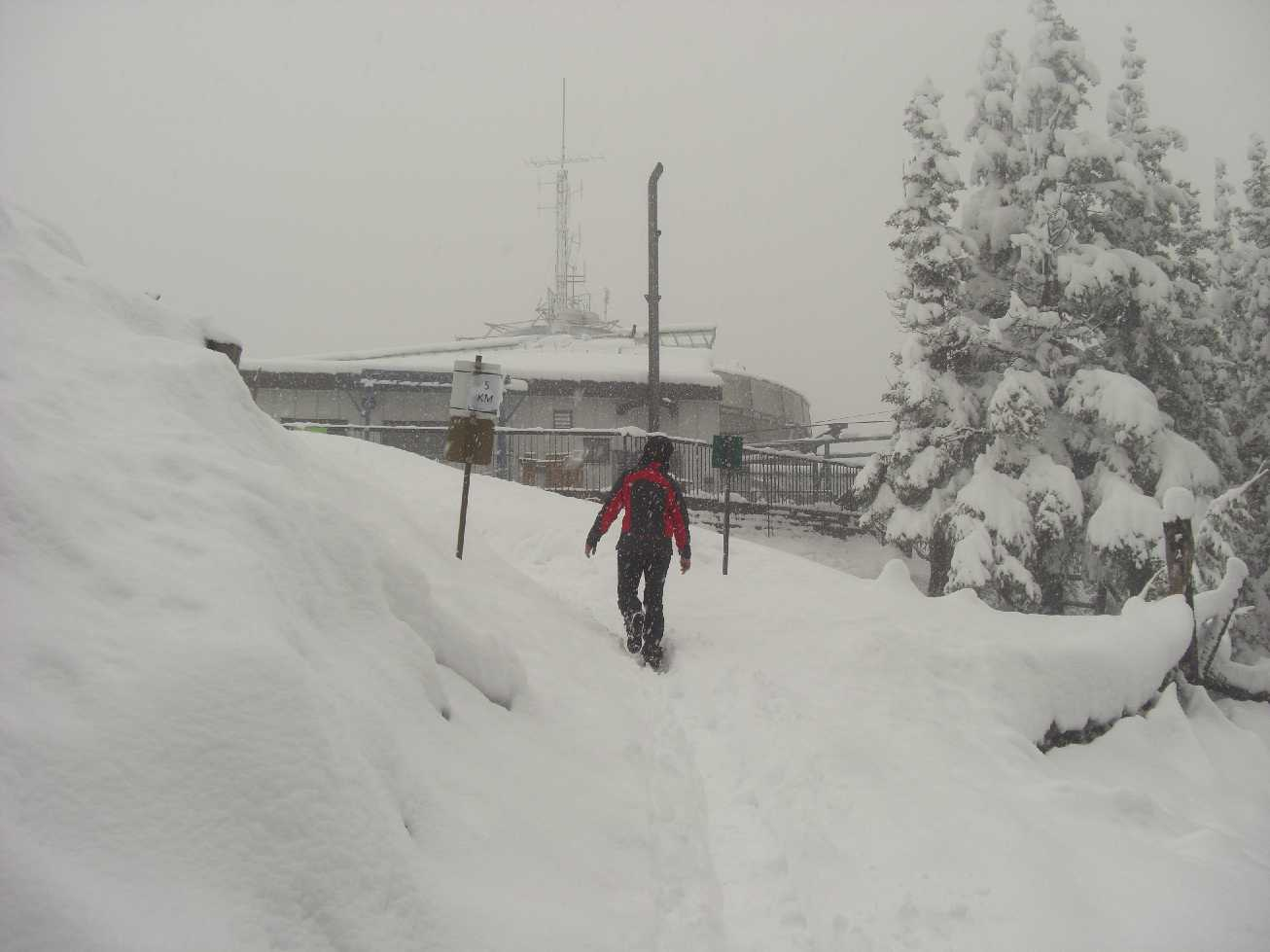 Winter in Banff - Juni 2012
